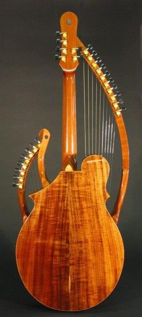 back1-Guitar-Luthier-LuthierDB-Image-2